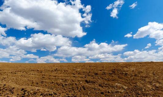 黑土白云是什么生肖