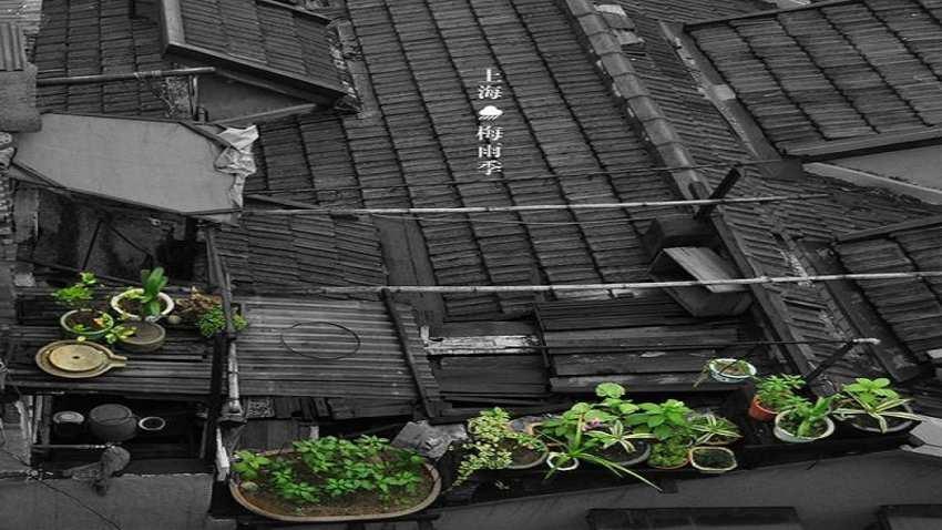 上海梅雨季节