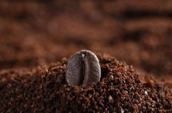 咖啡粉一次放几勺